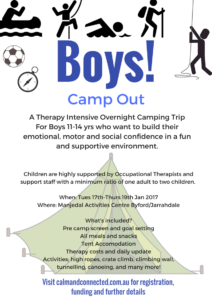 boys-camp-out-jan-2017